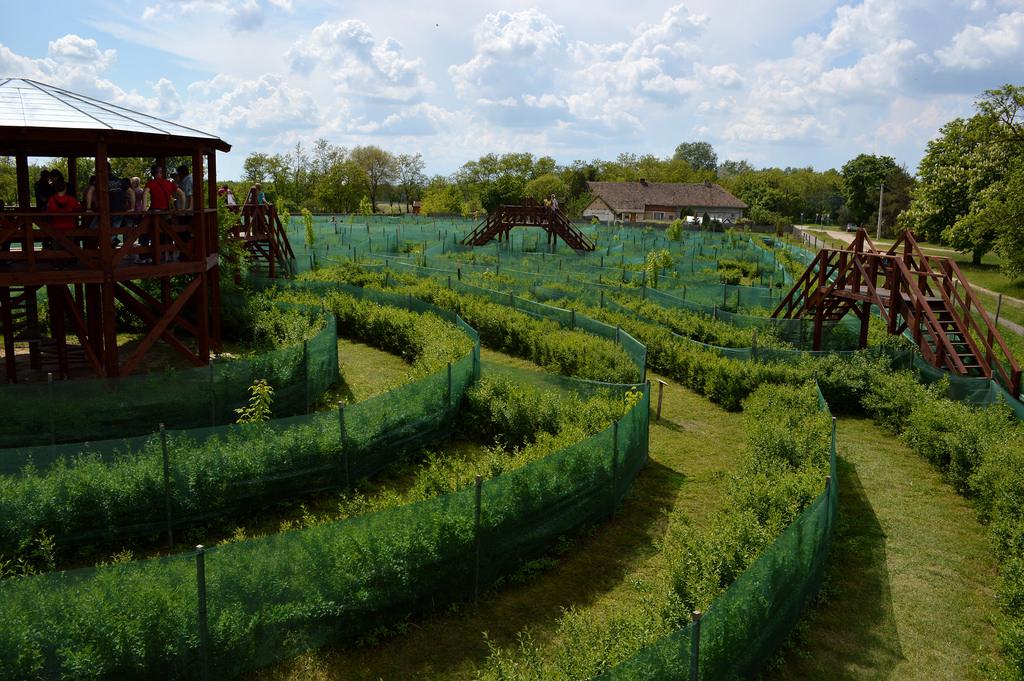 парки розваг угорщина