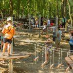 мотузкові парки угорщина