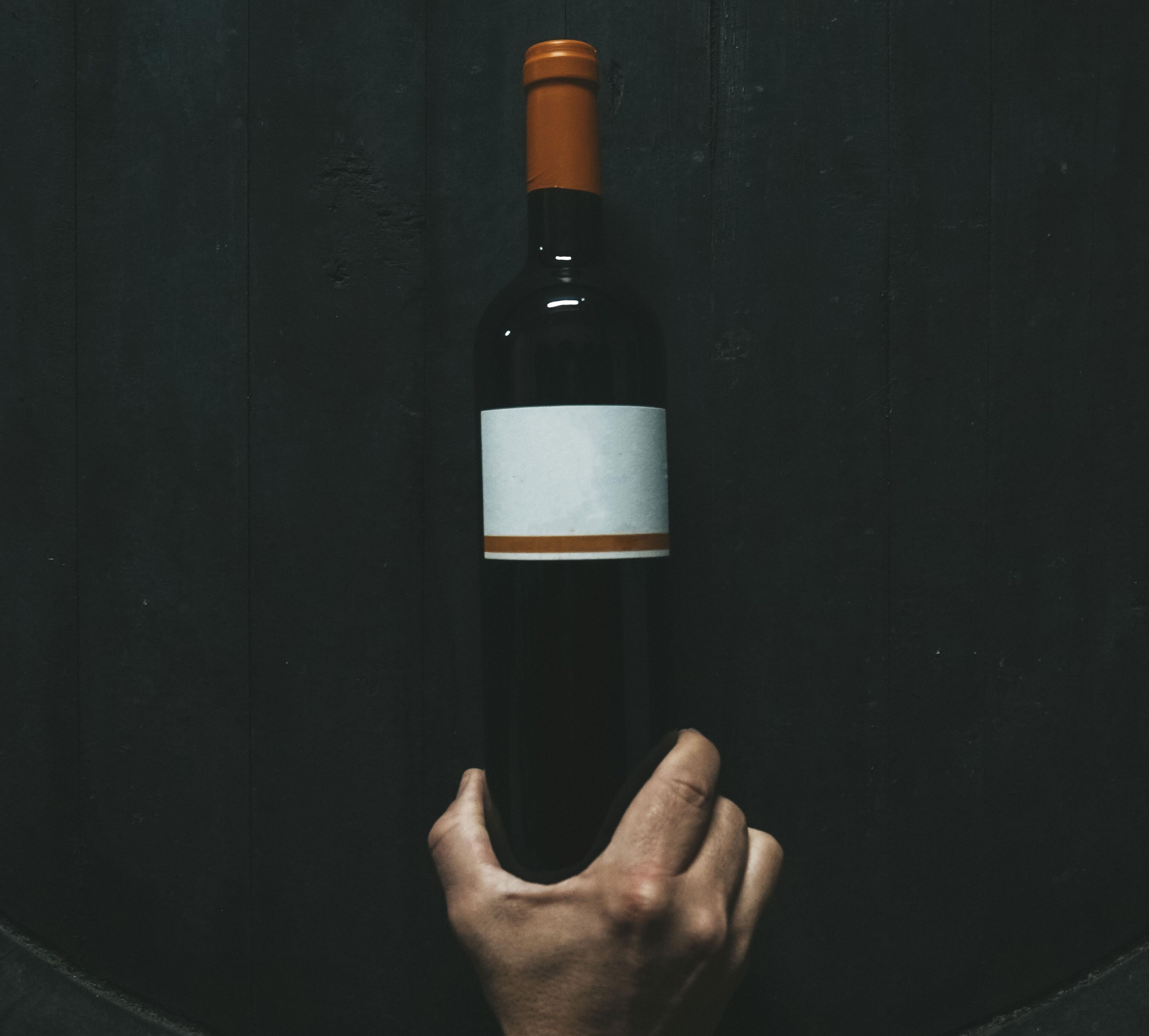 вино венгрия регионы