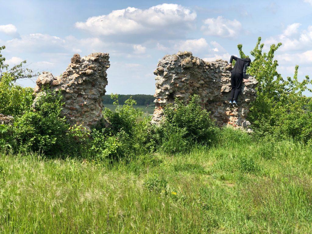 замок село кваси